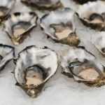 oysters-2220607_1920
